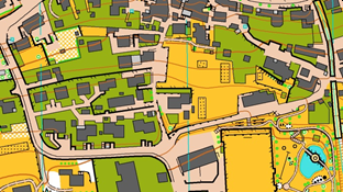 Cartina tipo 1