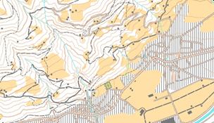 Cartina di tipo 2